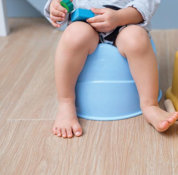 L'apprentissage de la propreté pas à pas